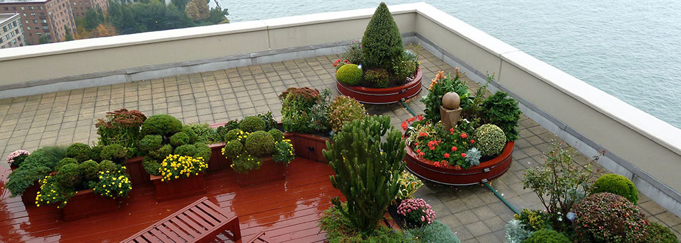 Kwikfynd Plants 87
