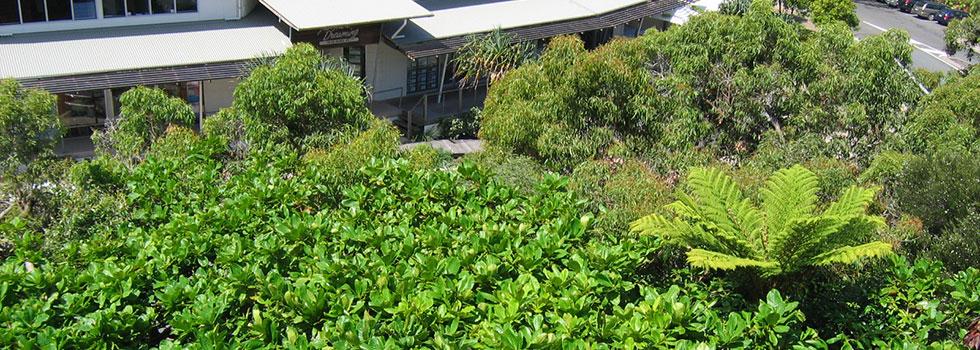 Kwikfynd Plants 9