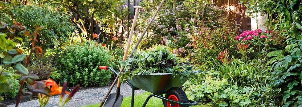 Kwikfynd Plants 99