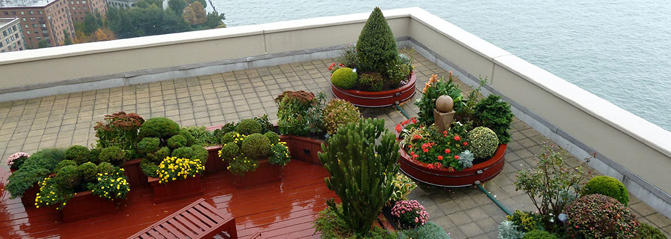 Rooftop and balcony gardens 14