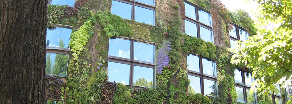 Kwikfynd Rooftop and balcony gardens 8