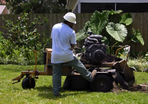 Stump grinding services 1