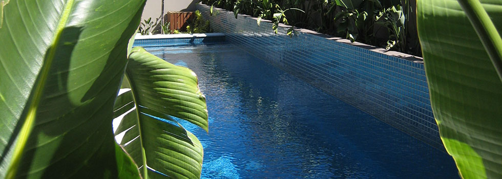 Kwikfynd Swimming pool landscaping 7