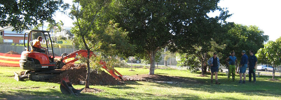 Kwikfynd Tree transplanting 1