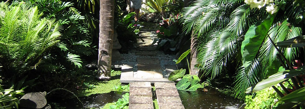 Kwikfynd Tropical landscaping 10
