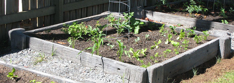 Kwikfynd Vegetable gardens 14