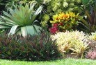 Tropical landscaping 9 thumb