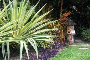 Tropical Landscaping thumb
